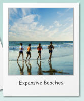 Expansive Beaches